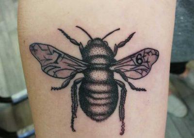 Nick Cook - Bumble Bee